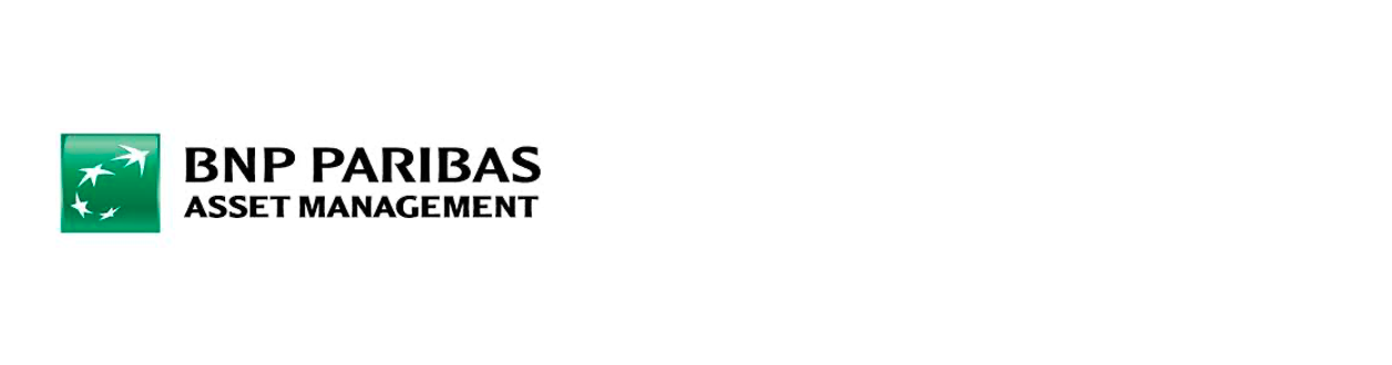 BNP PARIBAS INVESTMENT PARTNERS SGR SpA